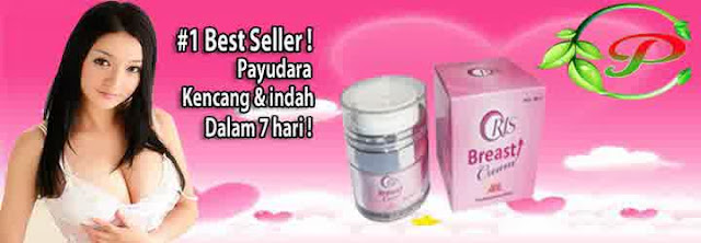 Oris Breast Cream Pengencang Payudara Alami Herbal