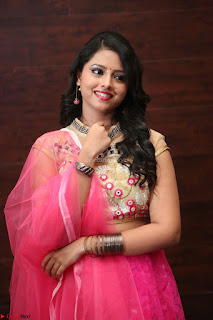 Geethanjali sizzles in Pink at Mixture Potlam Movie Audio Launch 045.JPG