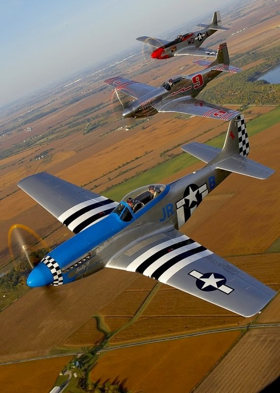 P-51 Mustang : mustang, World, Pictures:, Mustang