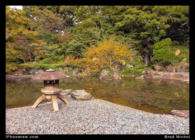 East Gardens of the Imperial Palace, pond, autumn trees, sculpture and stones.Ginza, Japan.