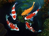 Crescatorie de crapi japonezi (Koi fish)