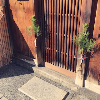根引き松 京都