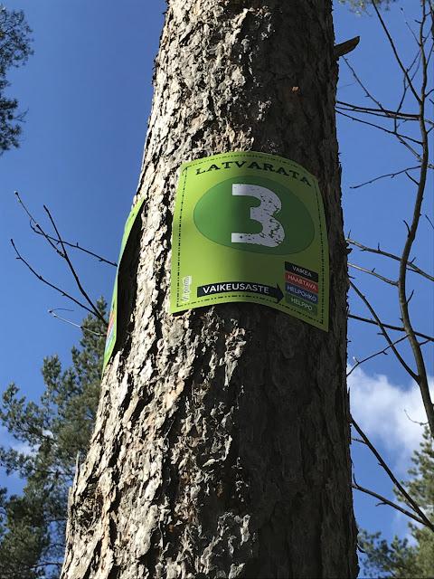 Uusi köysiseikkailupuisto avattiin Helsingin Paloheinään 12