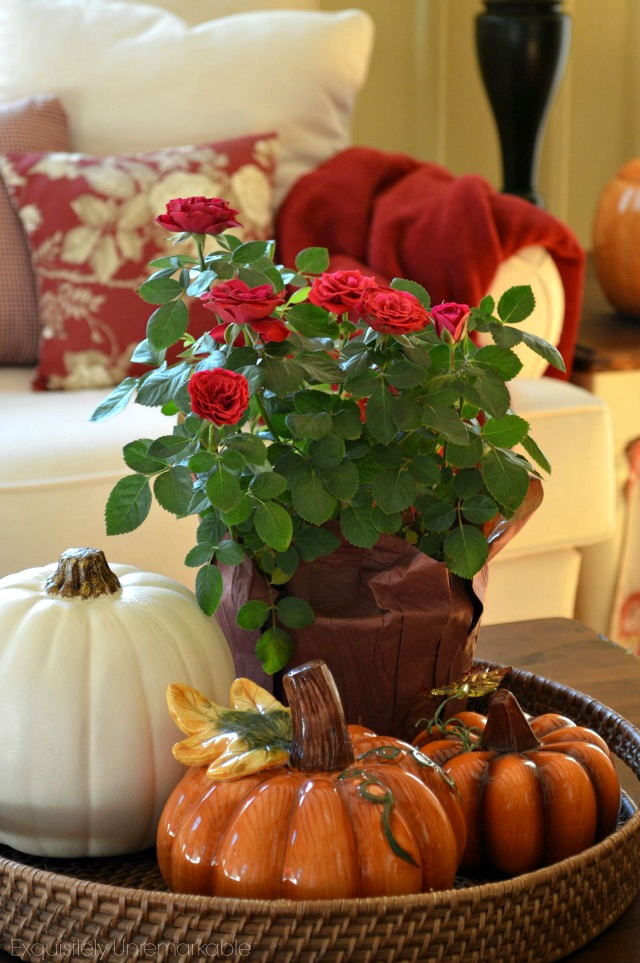 Fall Cottage Home Tour