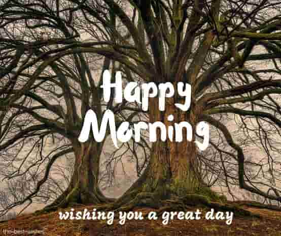 happy morning wishing you a great day
