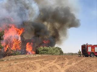خدوث حرائق في غلاف غزة ...بفعل البالونات الحارق