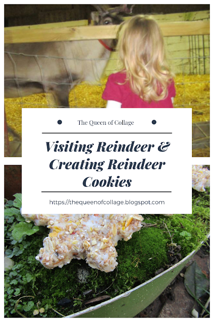 Visiting Reindeer and Creating Reindeer Cookies