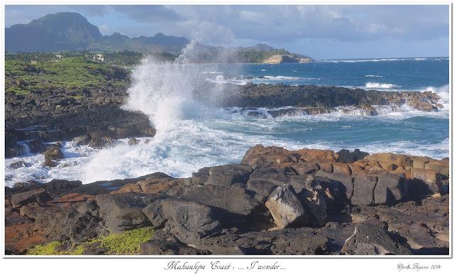 Mahaulepu Coast: ... I wonder...