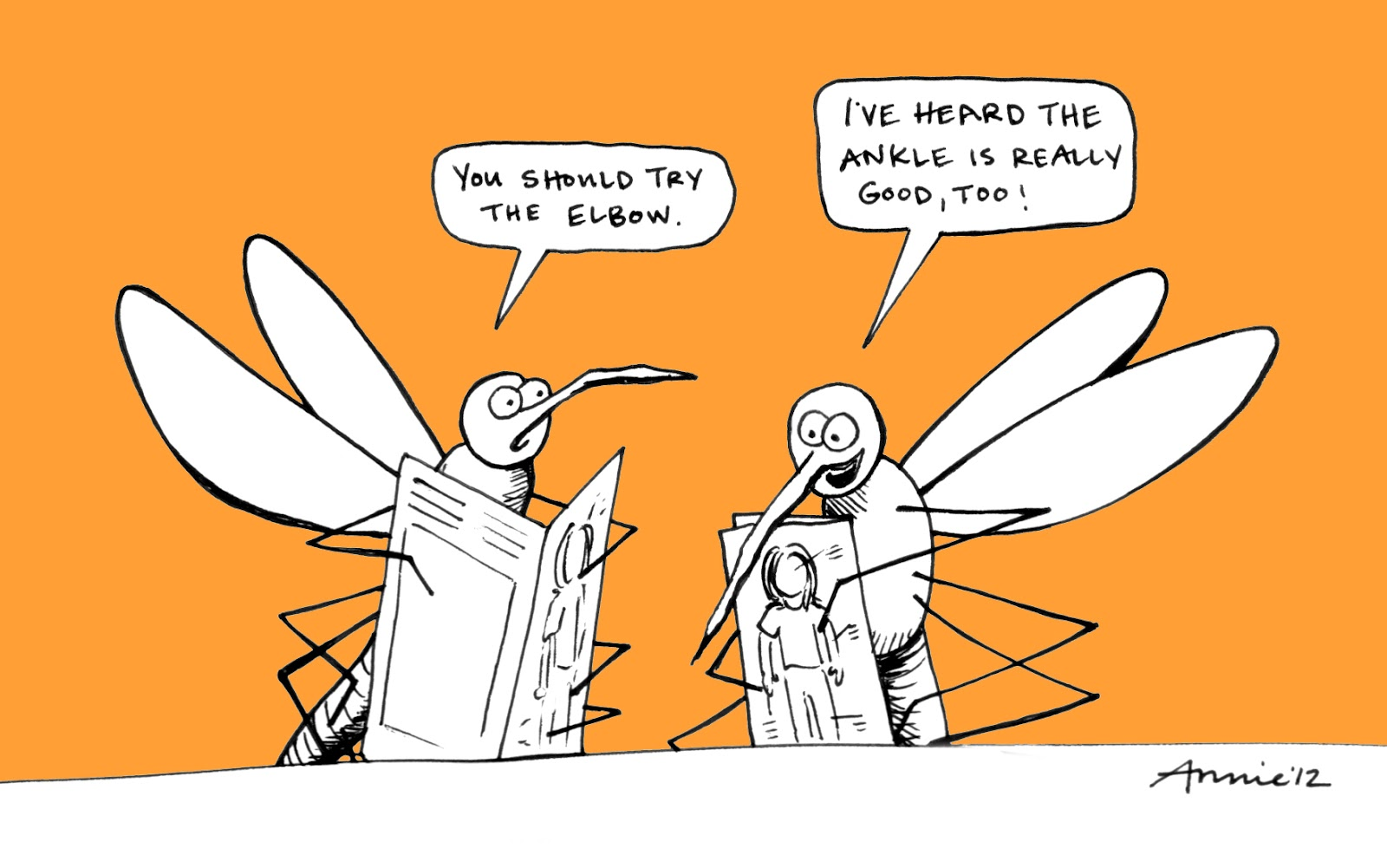 Bed Bug Jokes And Cartoons