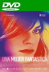 Una mujer fantástica (2017) DVDRip Latino AC3 5.1