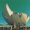 Anda bisa membawa keluarga anda menyaksikan karya seni terhebat internasional di Art Science Museum Singapore.