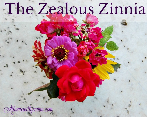 fabulous-brilliant-showy-colorful-zinnia-gardening-athomewithjemma