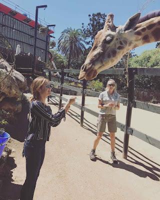 Lucy Hale with giraffe in Australia