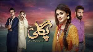 Pagli Episode 14 HUM TV Drama | 27 November 2017