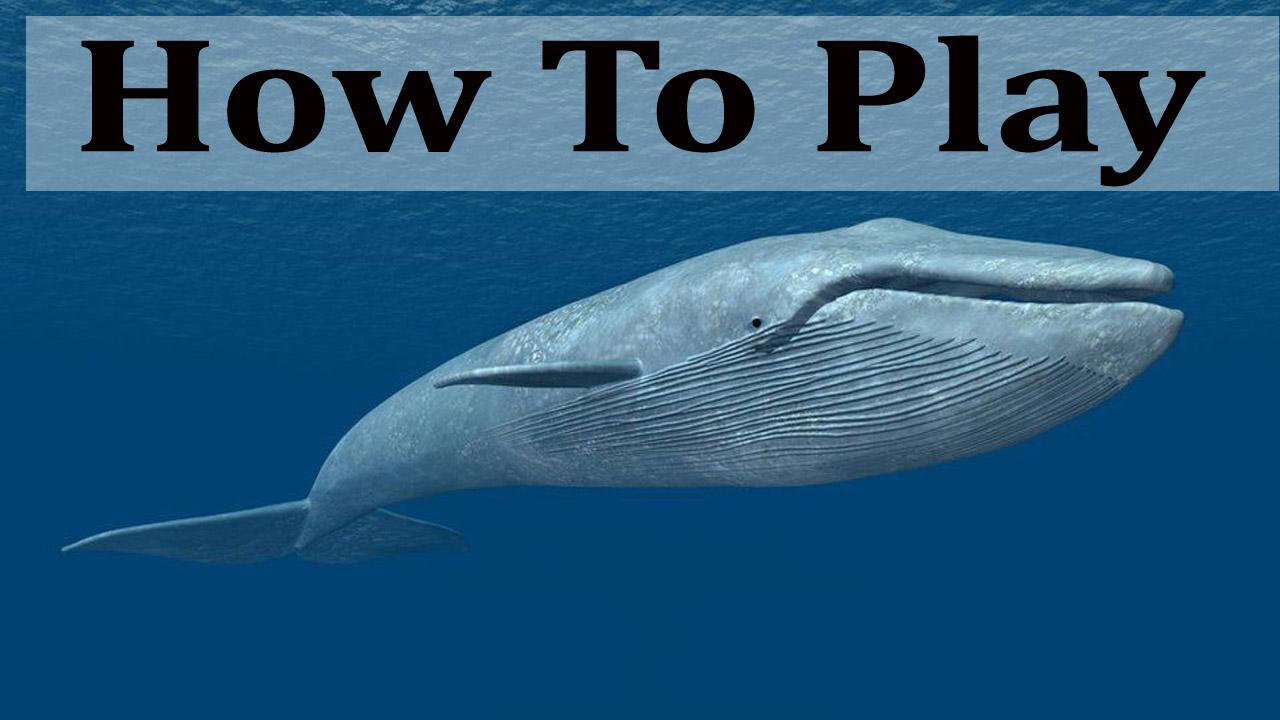 Spiel Blue Whale