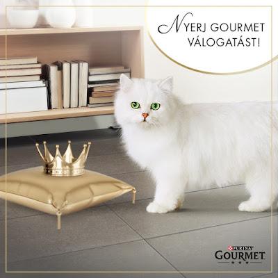 Gourmet Purina Nyereményjáték