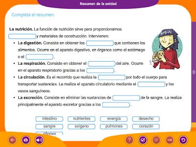 http://ceiploreto.es/sugerencias/juegos_educativos_6/1/7_Resumen_de_la_unidad/index.html