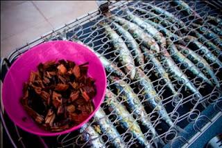 Weber-Grill-Academy-sardines