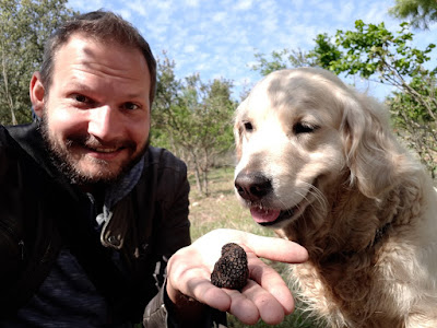 Truffle hunting with dogs in the prades mountains Catalonia