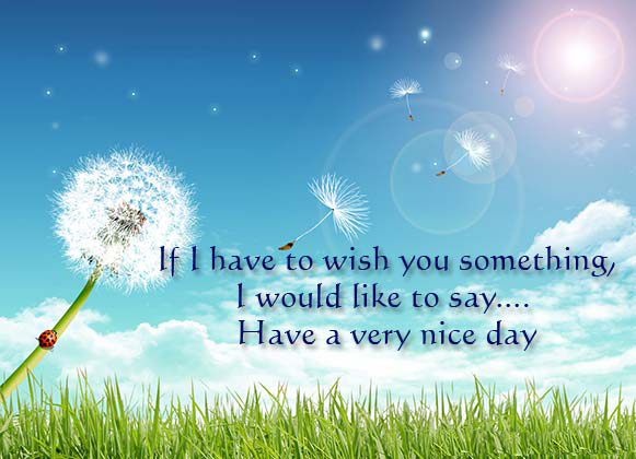 good morning greeting cards hd wallpapers free download 2013