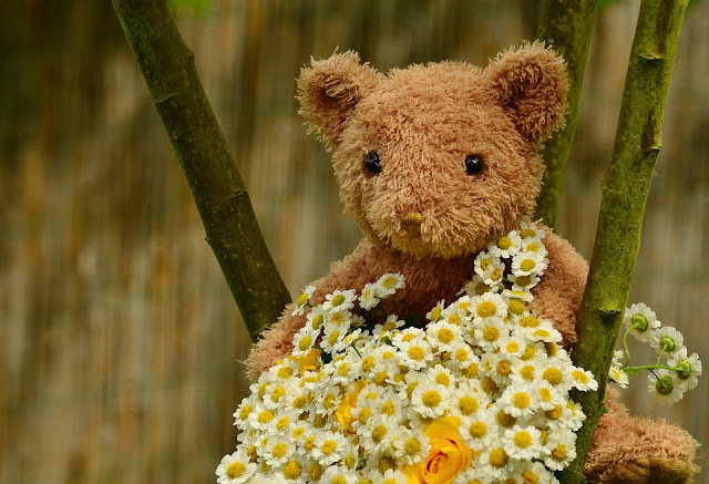 Teddy Bear Day 2017 Images
