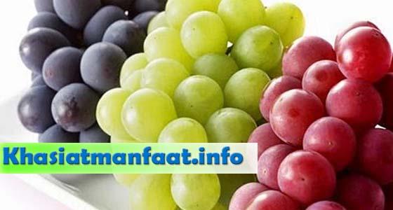 Khasiat Dan Manfaat Buah Anggur