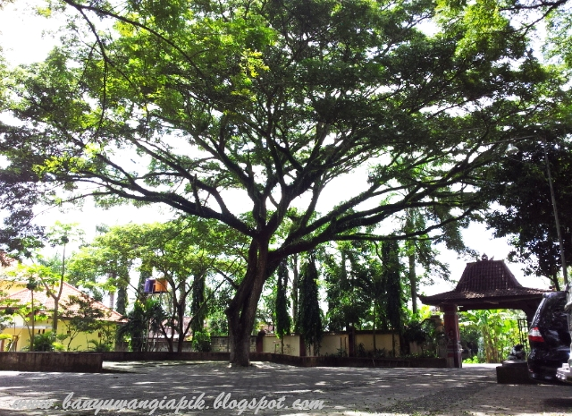 Tempat parkir /halaman depan Gua Maria Jatiningrum, Banyuwangi