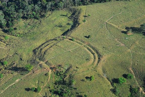 Des centaines de géoglyphes sous la forêt amazonienne