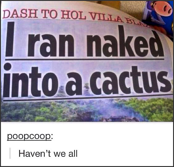 I can truly only say... OUCH! What a prickly situation that would be... | #funny #meme #lol #cactus #naked #nope