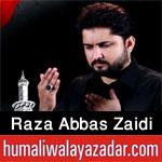 http://www.humaliwalayazadar.com/2013/06/syed-raza-abbas-zaidi-nohay-2006-2013.html