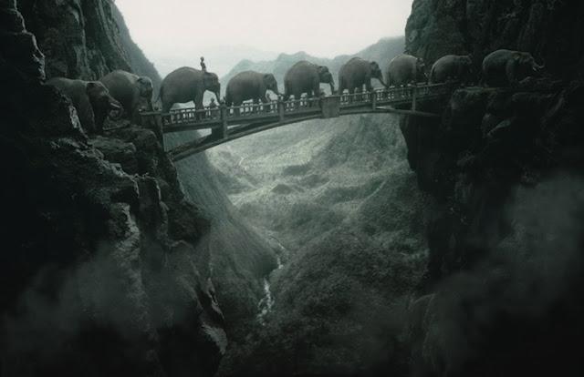 Green Pear Diaries, fotografía, Thomas Herbrich, foto-manipulación, efectos especiales