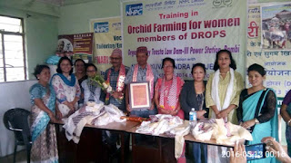 farewell to kp sharma ronchong panchayat sec