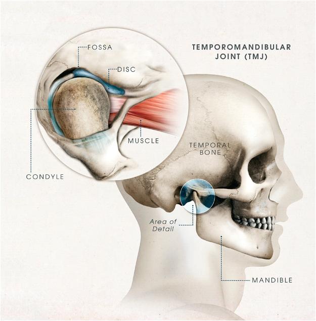 Temporomandibular Disorders Lecture Note On Oral Medicine