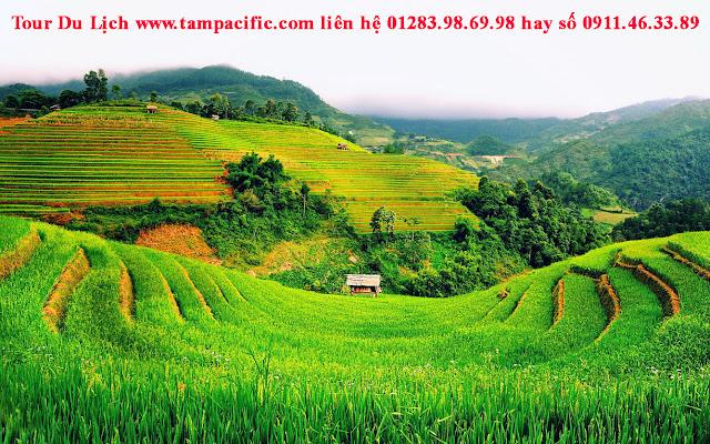 Những lý do du khách yêu thích Việt Nam mà bạn có thể đoán thử xem ?