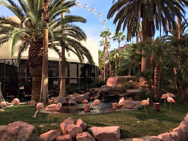 Ragnar Relay Las Vegas 2015 Recap Flamingo