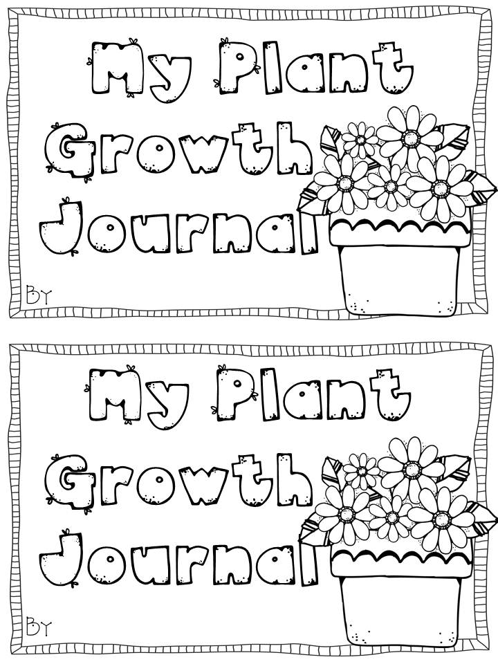 Pin Plant Observation Journal on Pinterest
