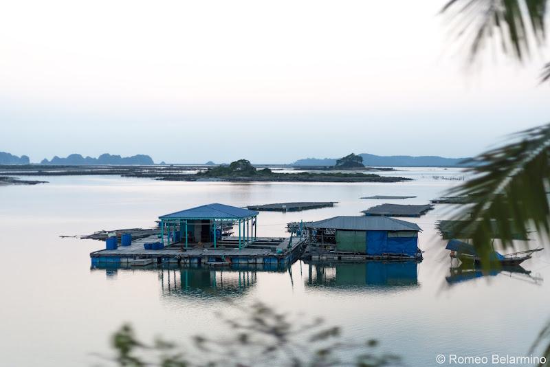 Hanoi Side-Trip to Ha Long Bay in 24 Hours Fish Farm