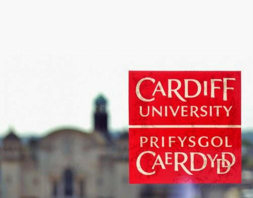 Cardiff City Car Sticker