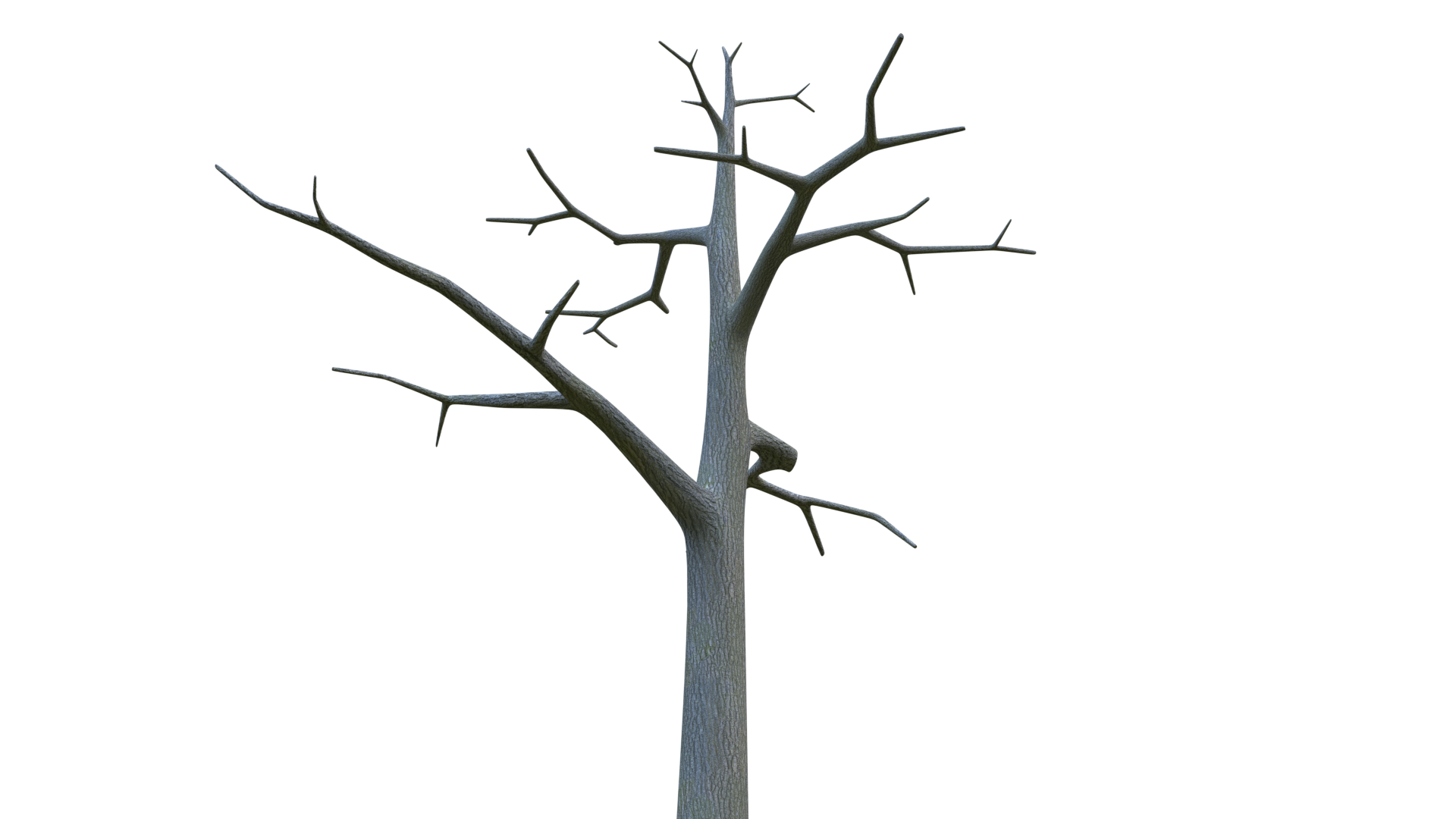 Free 3D Barren Tree CC0 3DS - Free 3D Models Under Public Domain
