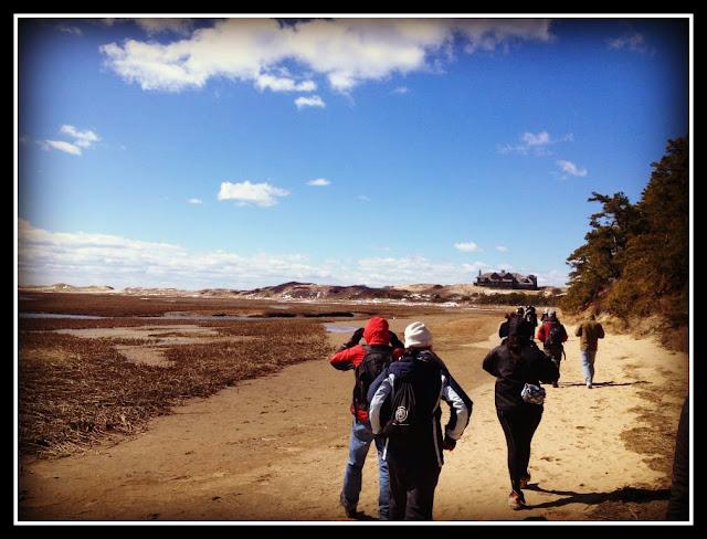 Great Island Trail: Marismas