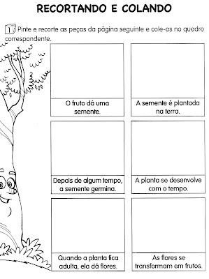 Atividades de Ciências - Plantas - DESENVOLVIMENTO-2