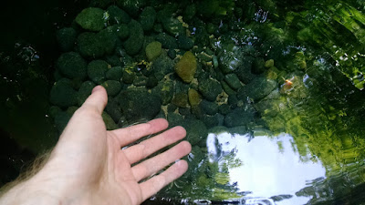Me dipping my hand into the beautifully clear spring water.