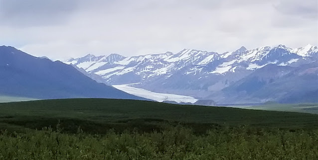 View of Maclaren Glacier from the road