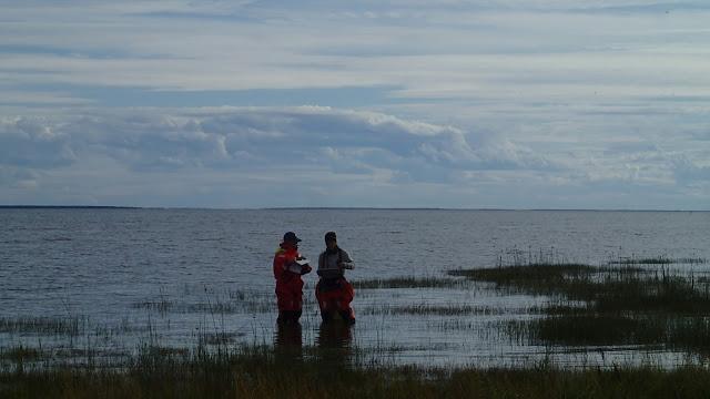 Kaksi kartoittajaa matalassa rantavedessä.