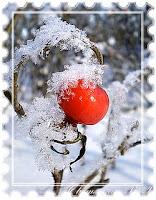 зима в России фото
