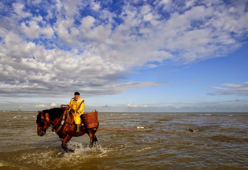 10 Best Places to Holiday in Belgium (100+ Photos) | Fisherman hauls a net. Oostduinkerke, Belgium.