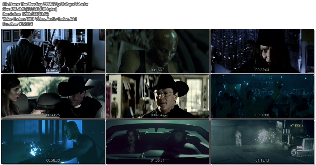 The Bleeding 2009 720p BluRay 700MB x264 Movie Screenshots