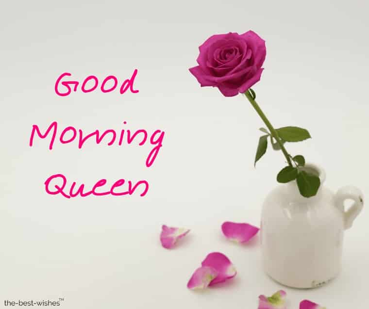 good morning queen pics