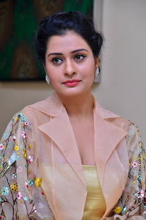 Payal Rajput at RX100 movie audio launch 39