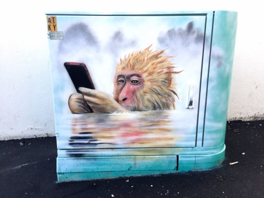 01-Monkey-Status-Update-Paul-Walsh-Decorating-Utility-Boxes-with-Art-in-New-Zealand-www-designstack-co